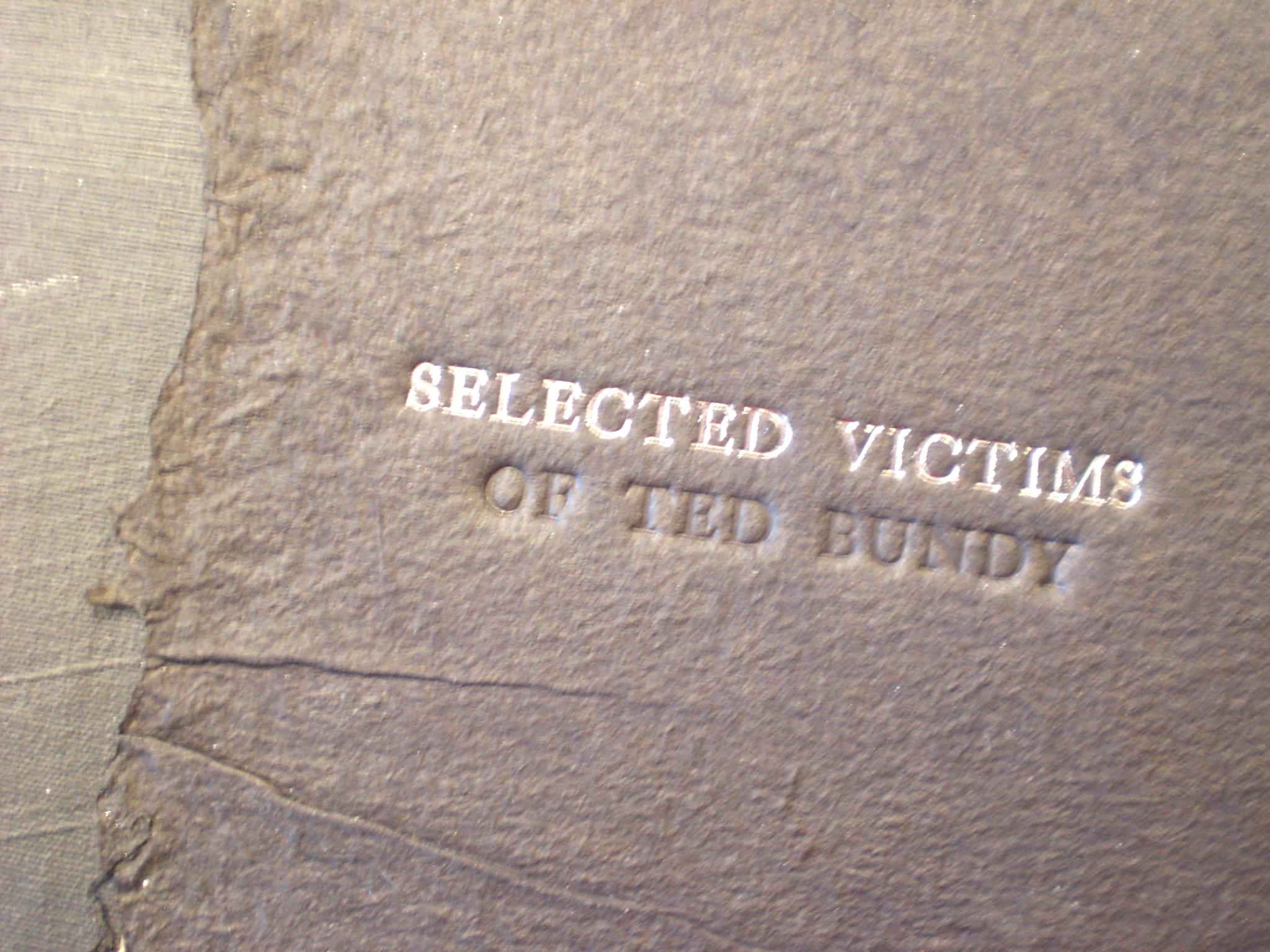 Victims of progress essay